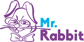 MR. RABBIT